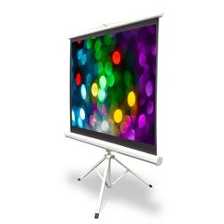 "50"" VIDEO PROJECTOR SCREEN EASY FOLD-OUT ROLL-UP PROJECTION"