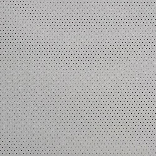 Carl's Perforated Acoustic FlexiGray Projector Acoustically Transparent, Audio Transparent, Home
