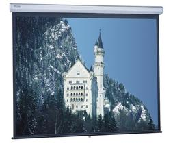 "Model C Manual Projection Screen Viewing Area: 87"" H x 139"""