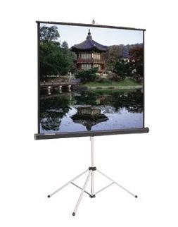 Da-Lite Picture King Video Spectra 1.5 Portable Projection S