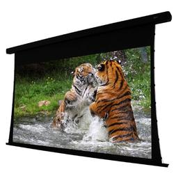 Reference Electric Projection Screen - 106